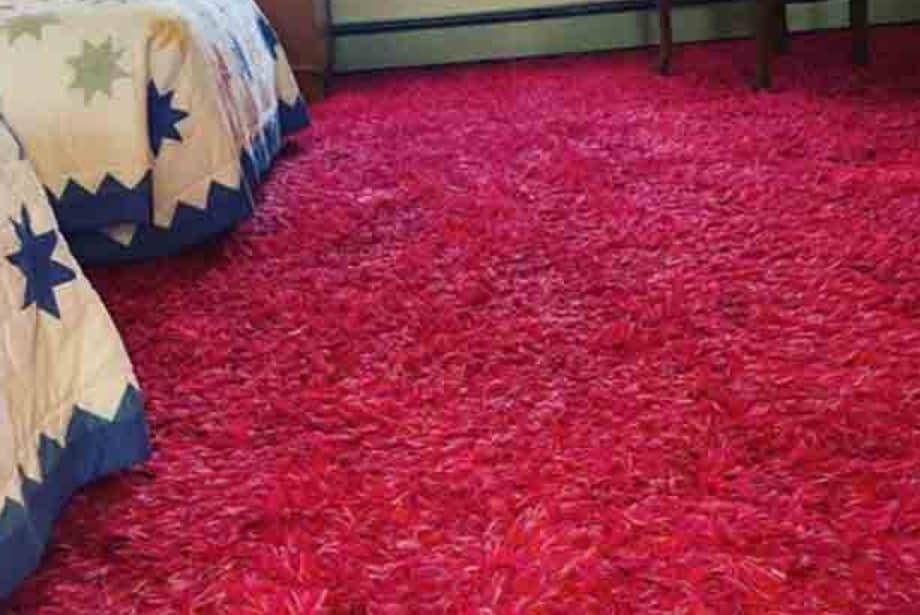 Shag Carpeting