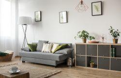 Shutterstock 559707847