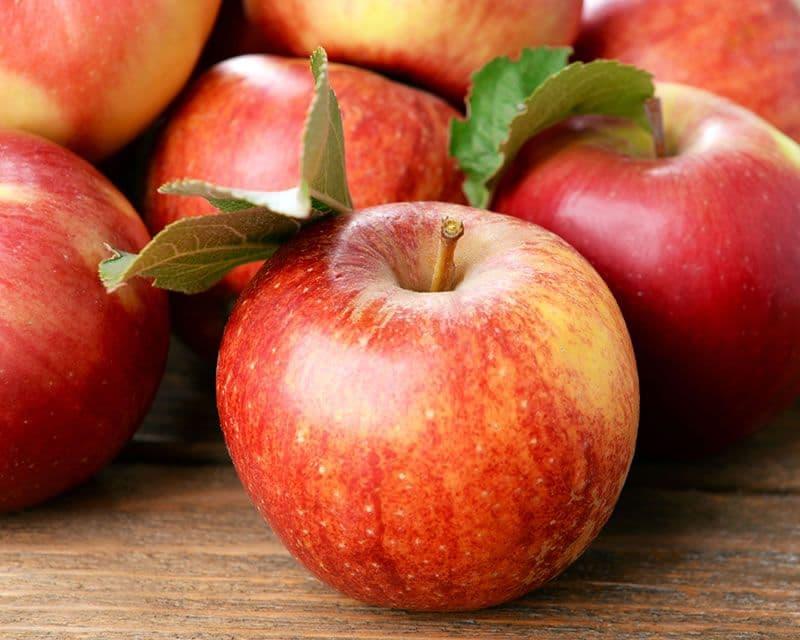 Pr Tn Fruit Apple